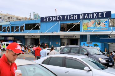 Heaps of fresh seafood abound here!