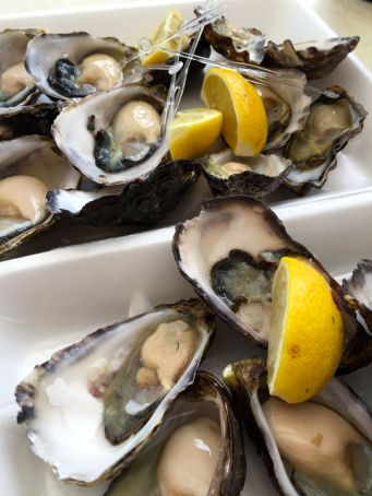 Three types of creamy and briny fresh shucked oysters